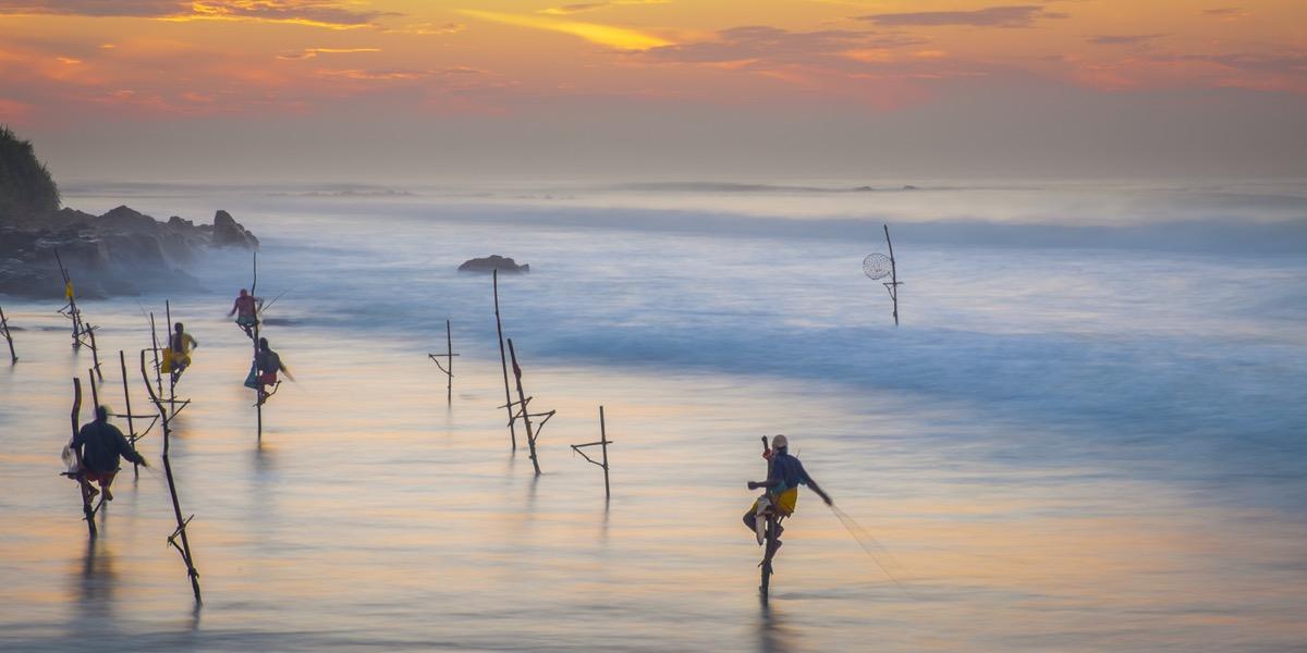 Ontdekkingsreis Sri Lanka14
