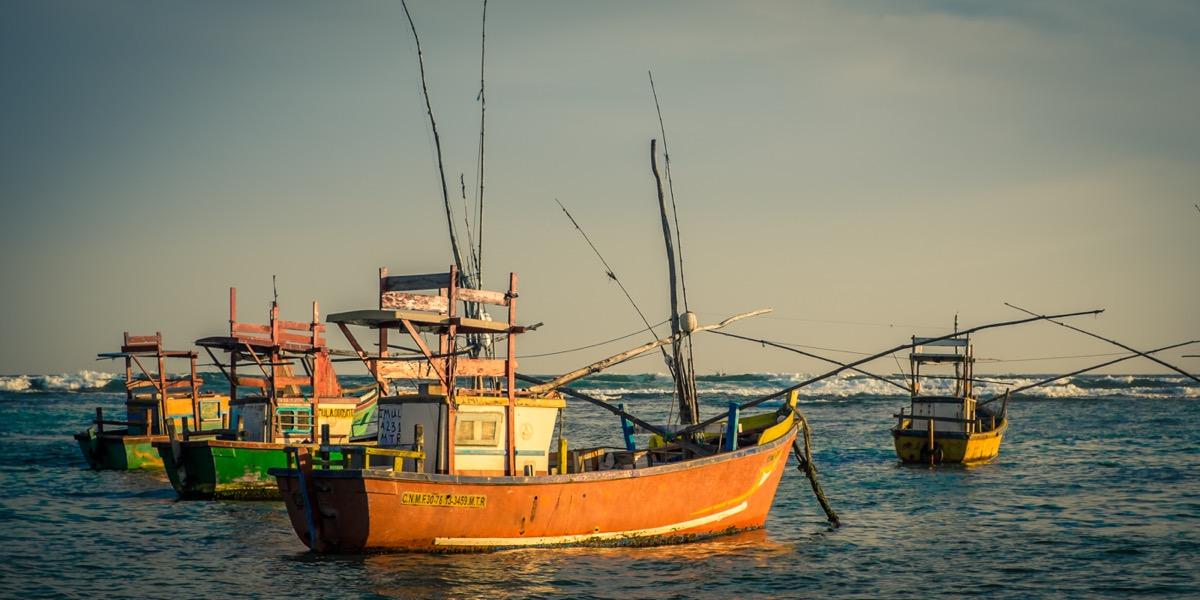 Ontdekkingsreis Sri Lanka2