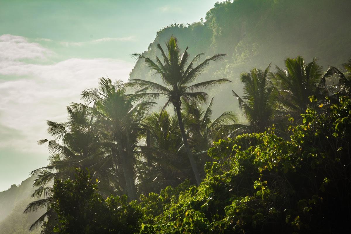 Bali_blog1_9
