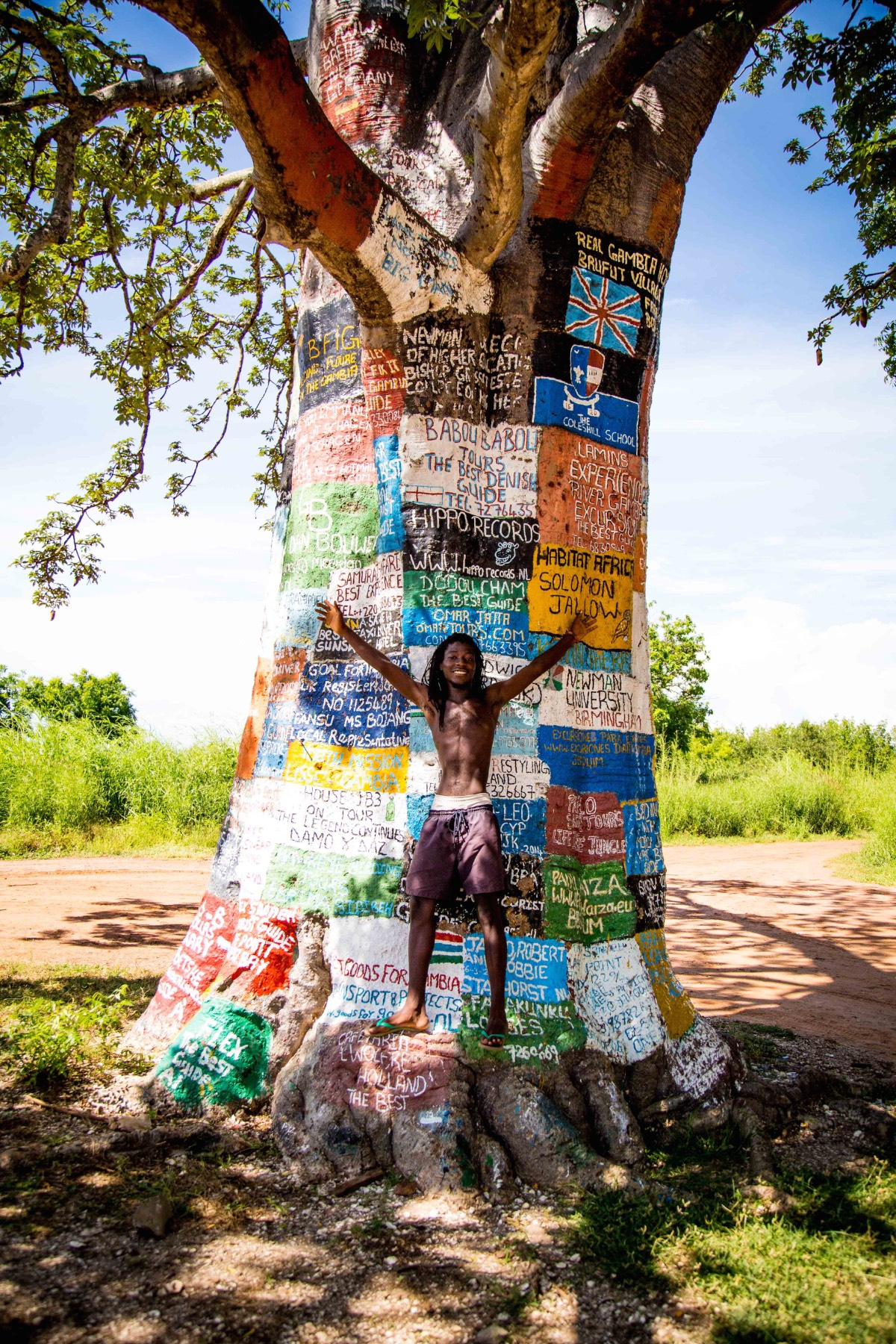 Gambiainternet tree 3