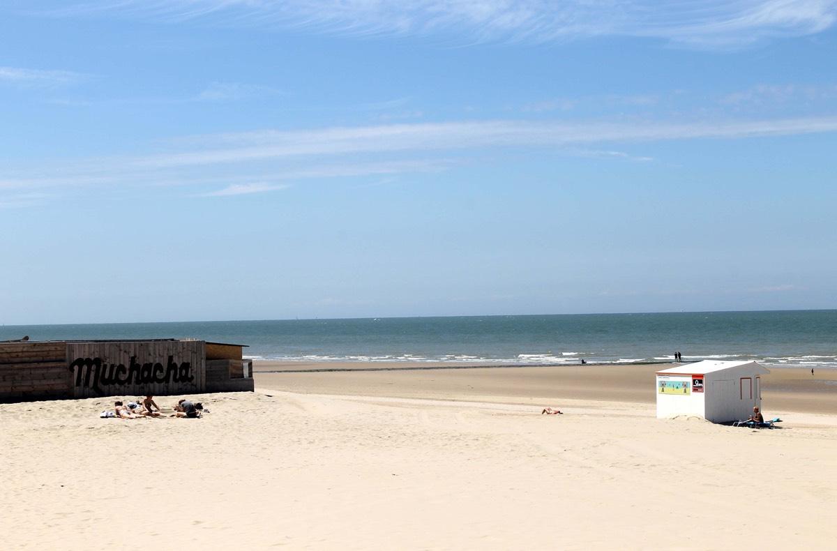 Vlaamse kust8