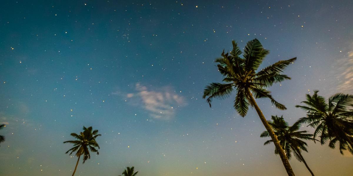 Ontdekkingsreis Sri Lanka6