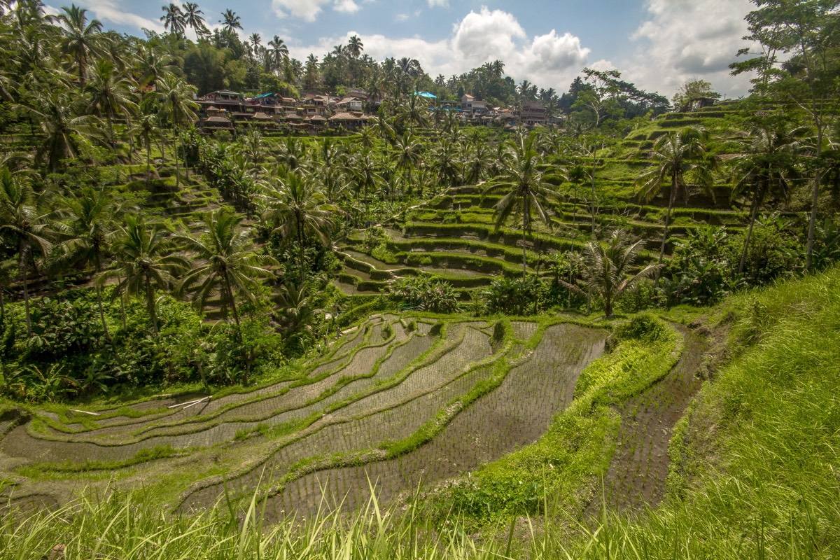 Bali_blog1_7