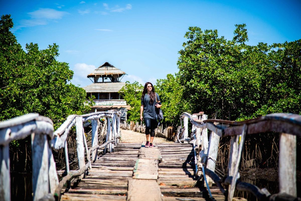 Gambiahouten brug 1