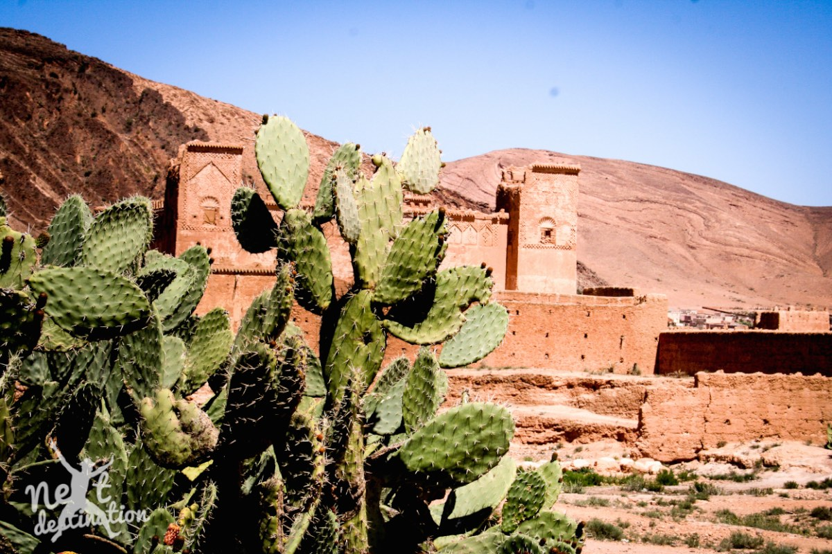 Taroudannt & Agdz 082_marokko