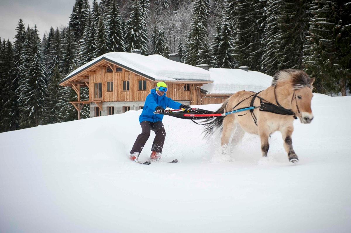 Ski-joëring3