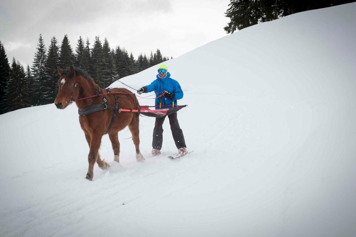 Ski-joëring5
