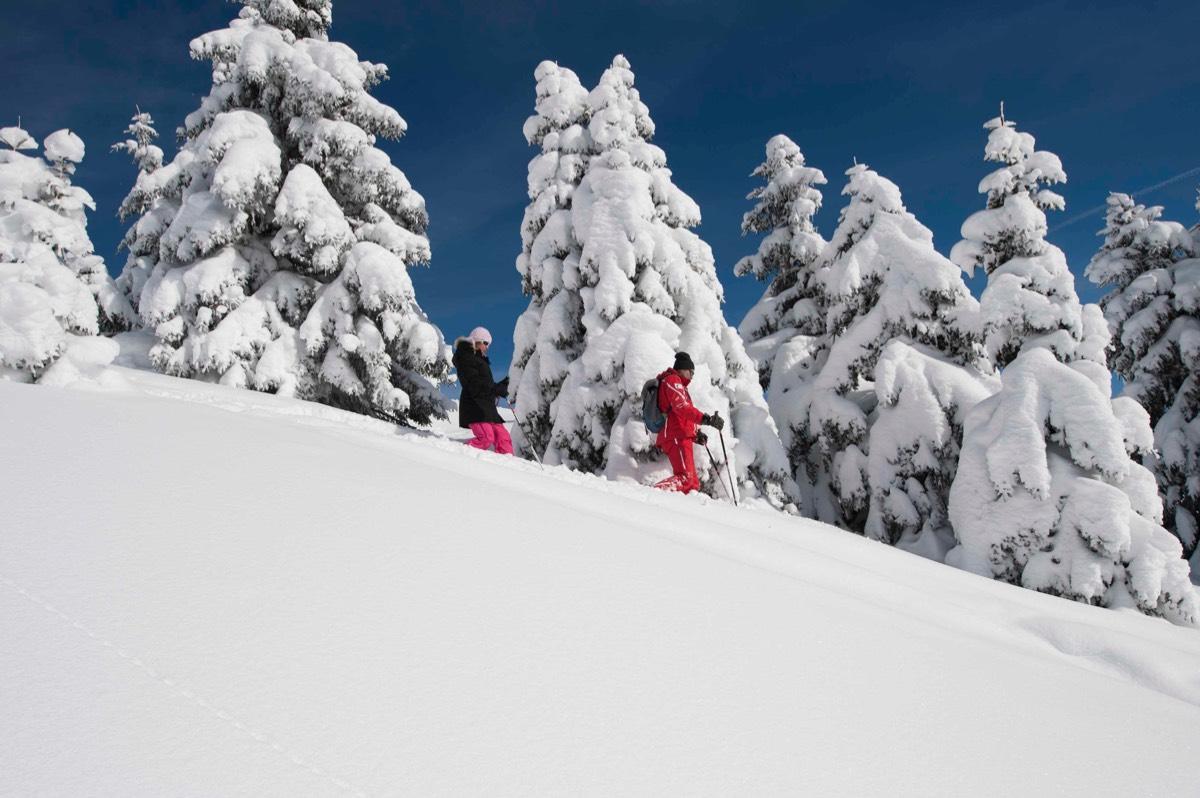 Sneeuwschoenwandelen2