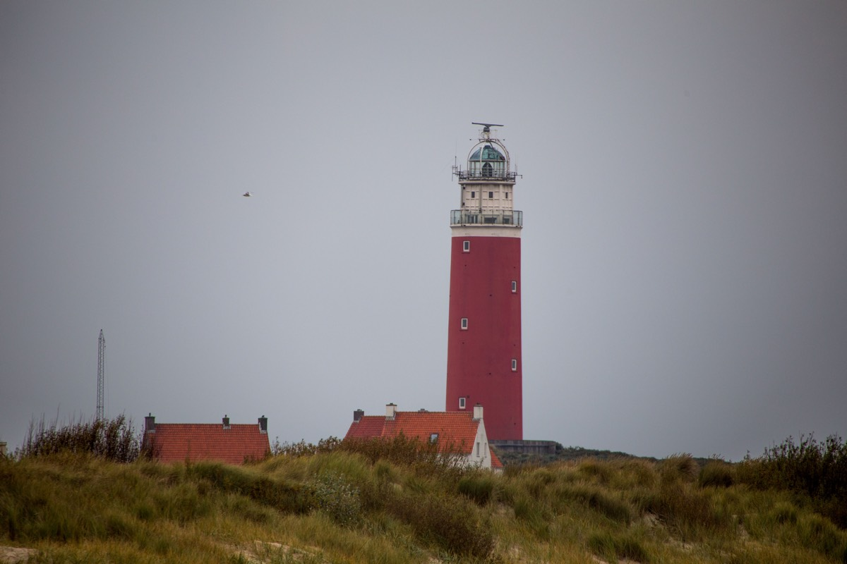 Texel-45