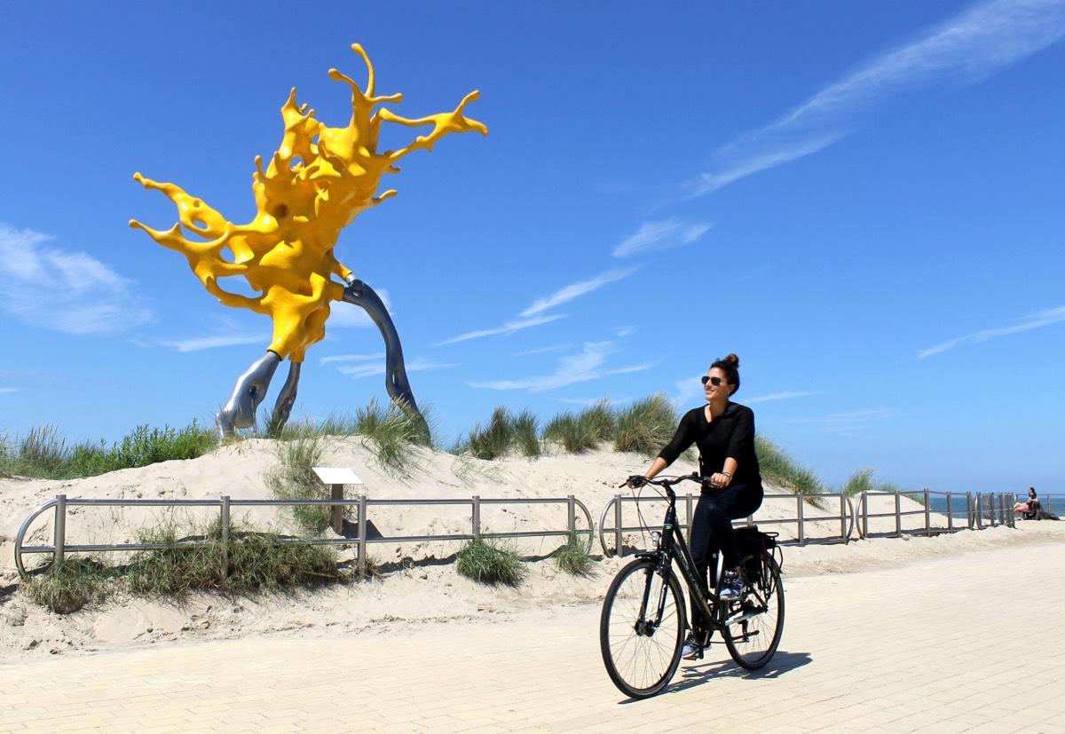 Vlaamse kust10